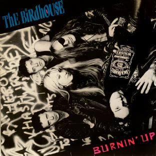 Birdhouse (The) ‎- Burnin' Up (LP) (VG-/G-VG)